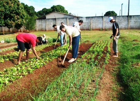 Acordo de cooperação técnica entre a Fetagri-MT e Secitec irá implantar mais 5 turmas do Curso de Técnico em Agropecuária voltado à agricultura familiar